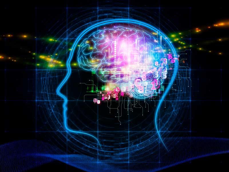 A importância do Business Intelligence